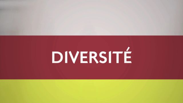 Diversité du 20.11.15