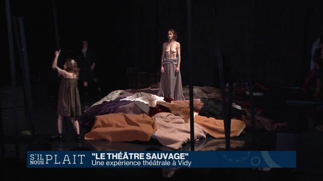 Le théâtre est sauvage à Vidy