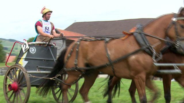 Courses populaires de chevaux à Vuippens
