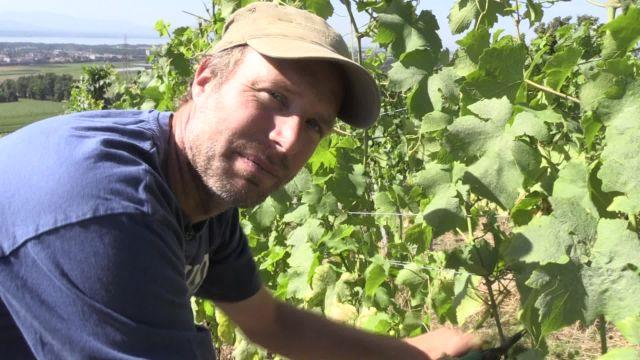 1H avec un viticulteur