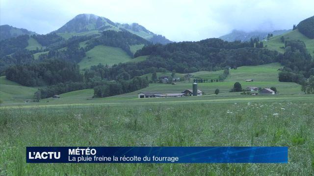 Des pluies gênantes pour les agriculteurs fribourgeois