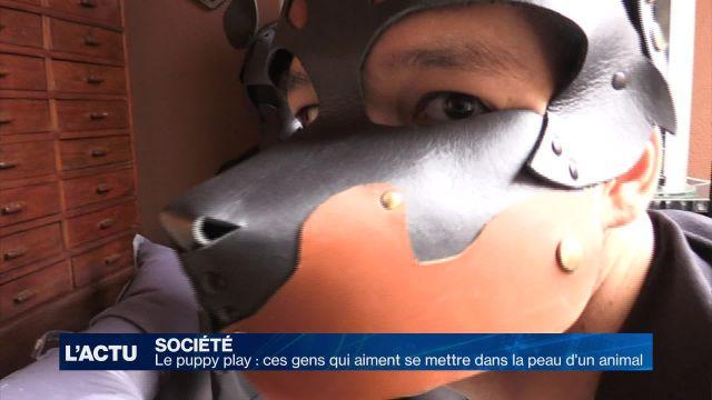 Le puppy play : une pratique peu connue en Suisse