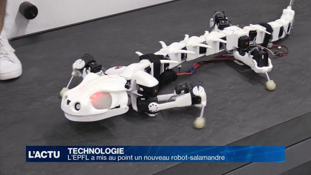 L'EPFL a mis au point un nouveau robot-salamandre
