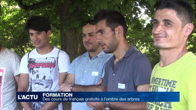 Des cours de français à l'ombre des arbres