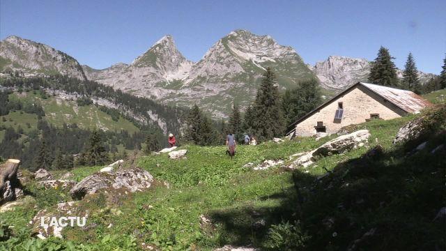 Des vacanciers œuvrent pour le maintien d'un alpage