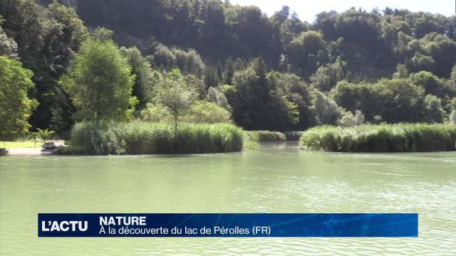 À la découverte du lac de Pérolles