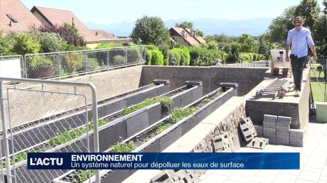 Un système naturel pour dépolluer les eaux de surface