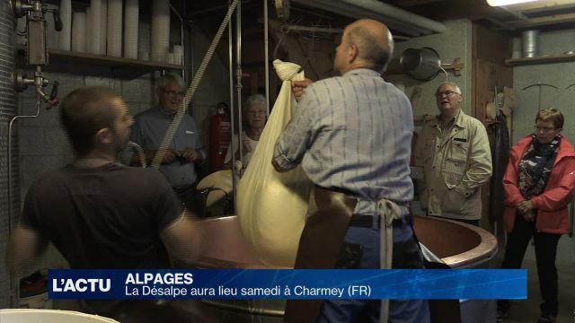 La Désalpe aura lieu samedi 24 septembre à Charmey (FR)