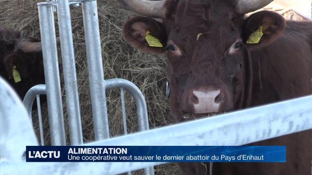 Une union pour sauver le dernier abattoir du Pays-d'Enhaut