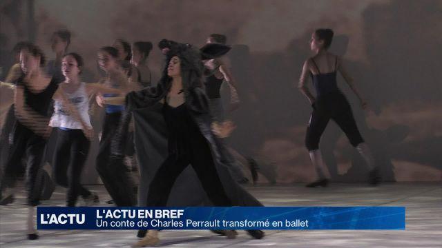 Peau d'Âne: un conte transformé en ballet