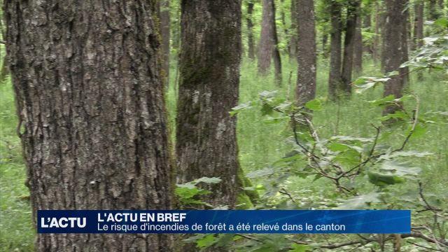 Le risque d'incendies de forêt a été relevé