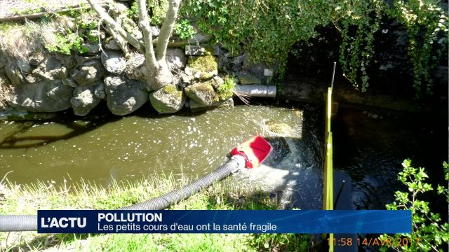 Les petits cours d'eau ont la santé fragile