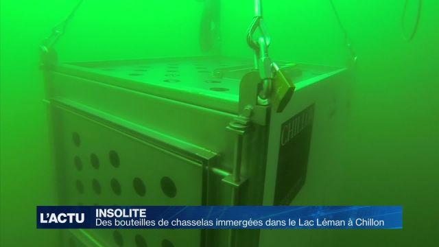 1'000 bouteilles immergées dans le Lac Léman pour 3 ans
