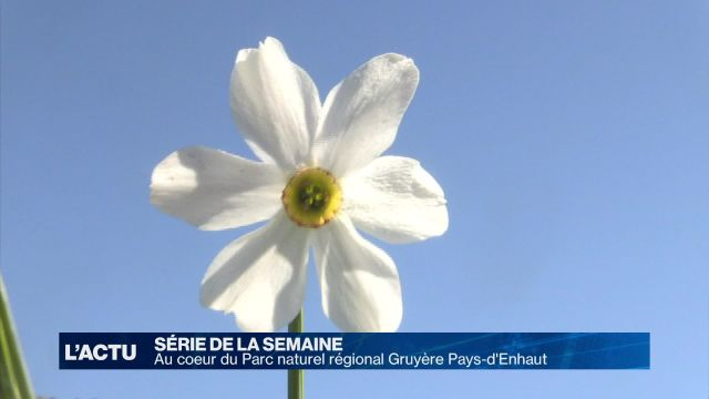 Au coeur du Parc naturel régional Gruyère Pays-d'Enhaut (1)