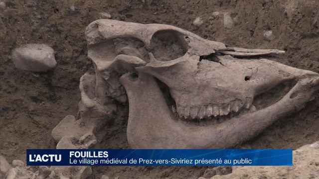 Visite de fouilles à Prez-vers-Siviriez