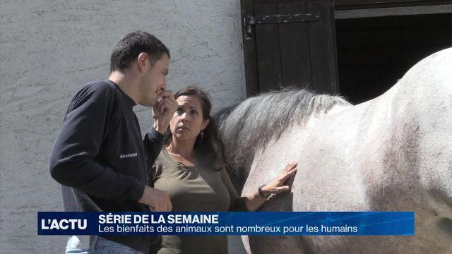 La thérapie avec le cheval apaise et stimule