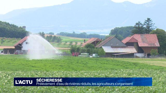Sécheresse: les agriculteurs ont des solutions