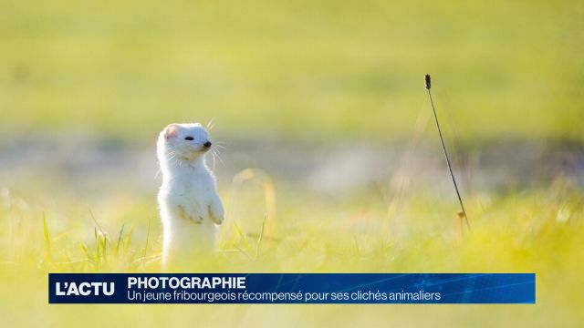 Jeune photographe fribourgeois primé