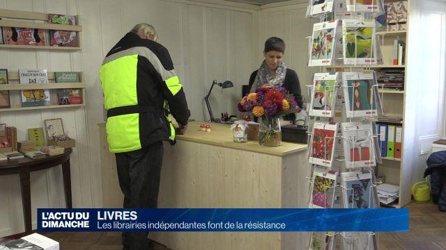 Les librairies indépendantes font de la résistance
