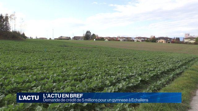 Demande de crédit de 5 millions pour un gymnase à Echallens