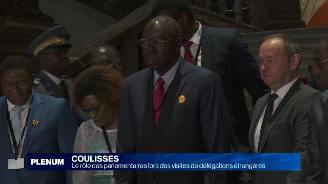 Le rôle des parlementaires lors des visites de délégations