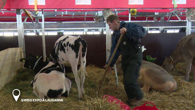 Swiss Expo à Lausanne