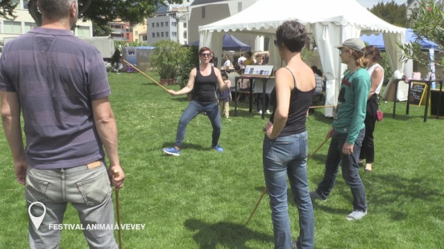 Festival Animai à Vevey