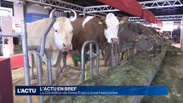 Swiss Expo a ouvert ses portes à Beaulieu