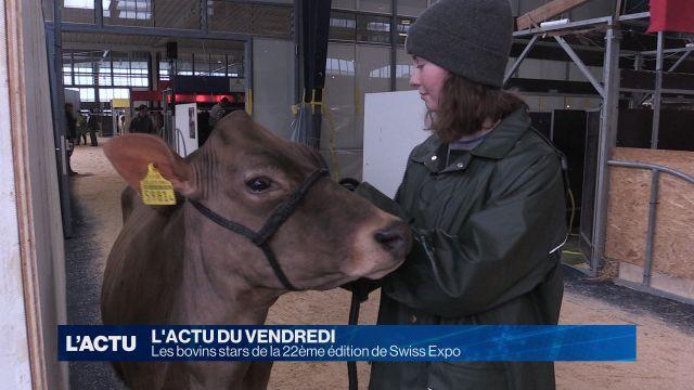 Swiss Expo a ouvert ses portes mercredi