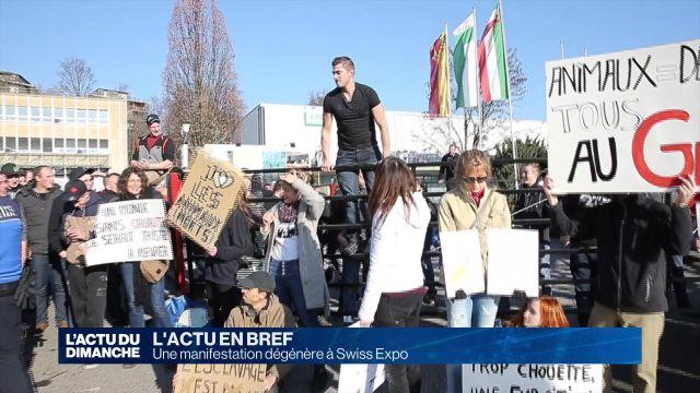 Une manifestation dégénère à Swiss Expo
