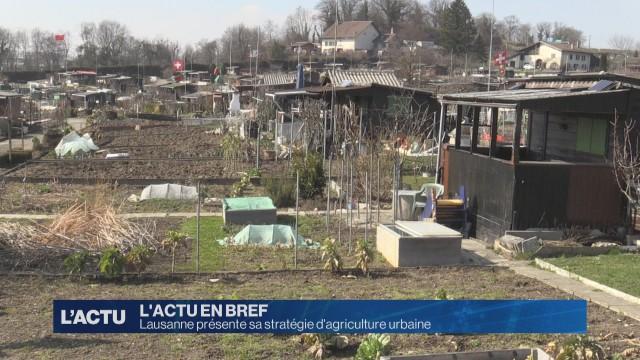 Lausanne présente sa stratégie d'agriculture urbaine
