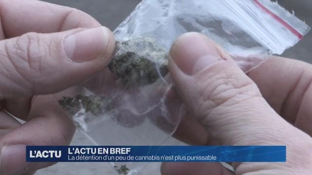 La détention d'un peu de cannabis n'est plus punissable