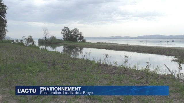 La renaturation du delta de la Broye est terminée