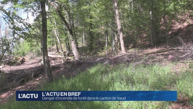 Danger d'incendie de forêt dans le canton de Vaud