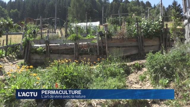 Mieux produire avec la permaculture