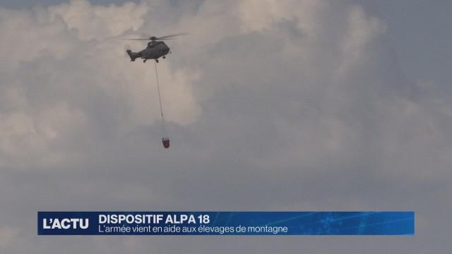 L'armée vient en aide aux élevages de montagne