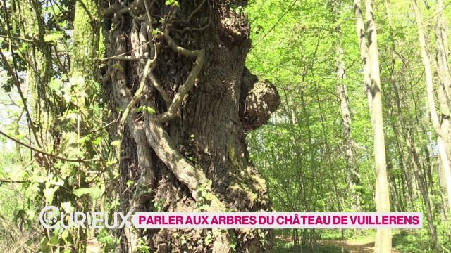 Parler aux arbres du Château de Vuillerens
