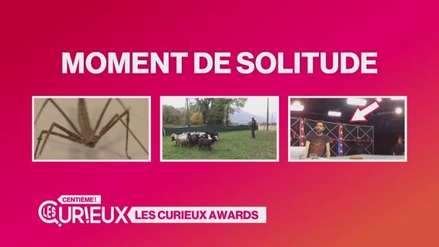 Les Curieux Awards
