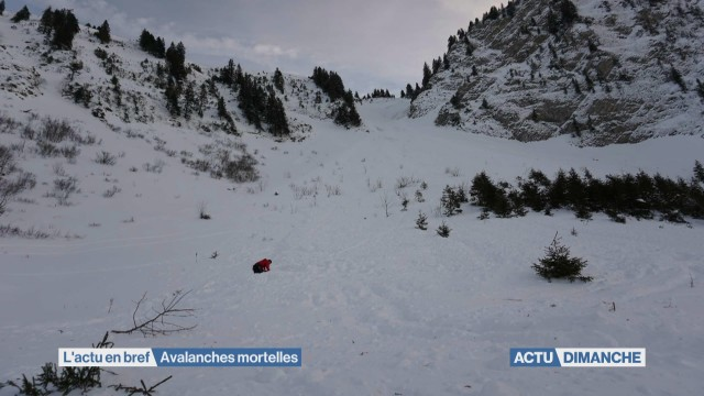Avalanches mortelles