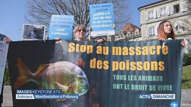 Manifestation antispéciste à Fribourg