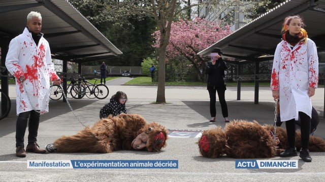 Manifestation pour l'abolition de l'expérimentation animale