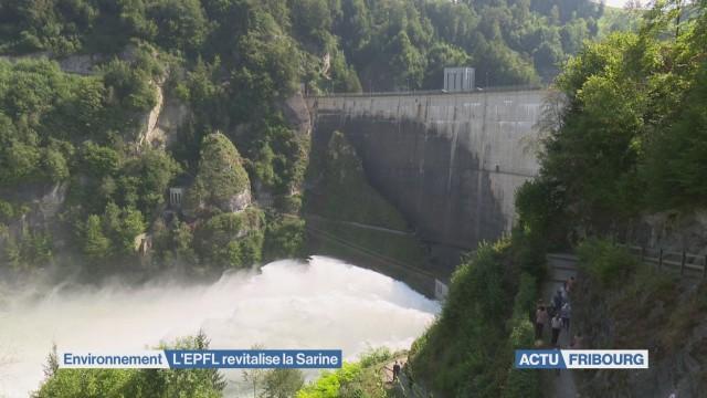 L'EPFL revitalise la Sarine