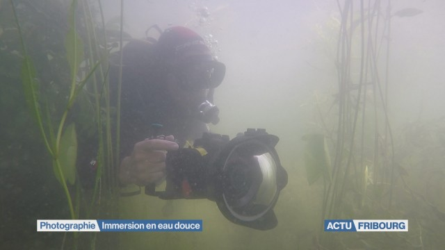 Immersion en eau douce