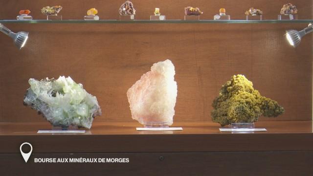 Bourse aux minéraux de Morges