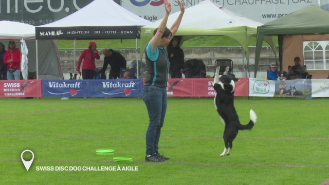 Swiss Disc Dog Challenge à Aigle