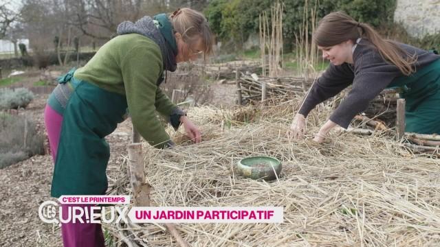 Un jardin participatif