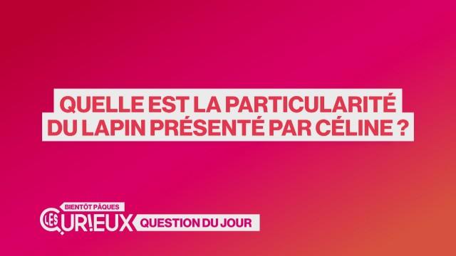 Quelle est la particularité du lapin présenté par Céline ?