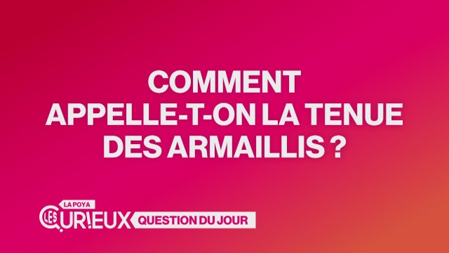 Comment appelle-t-on la tenue des armaillis ?
