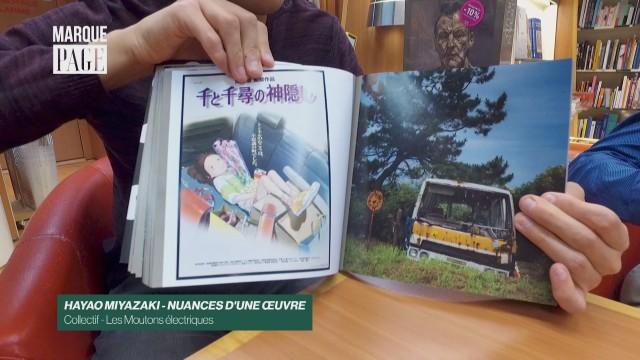 Hayao Miyazaki - Nuances d'une œuvre