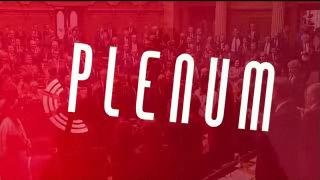 Plenum du 05.06.12
